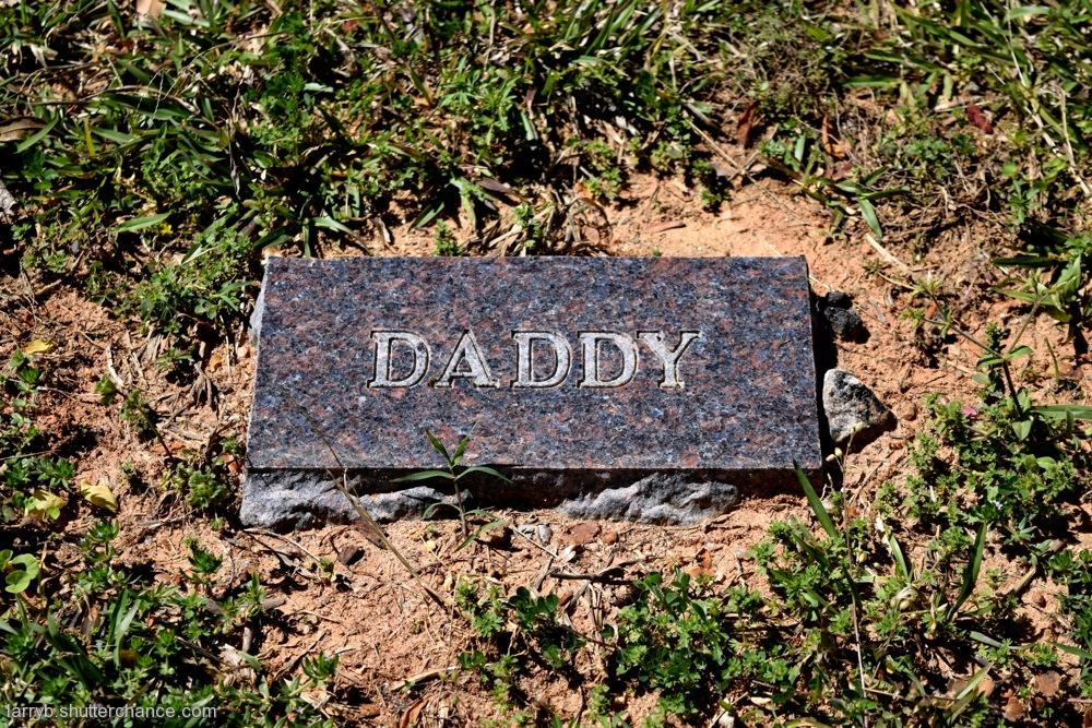 photoblog image Oakwood Cemetery #6
